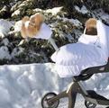 Зимний чехол Stokke, бу